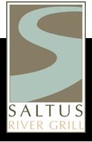 saltus-logo-small